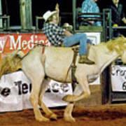 Bronc Riding Poster