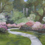 Brookgreen Gardens In Spring Poster by Shirley Lawing