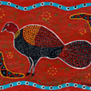 Brush Turkey Poster