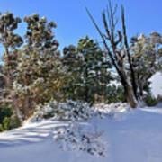 Bryce Canyon Snowfall Poster