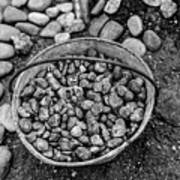 Bucket Of Rocks In Black And White Poster