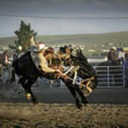 Bucking Bronco 2 Poster