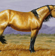 Buckskin Mustang Stallion Poster
