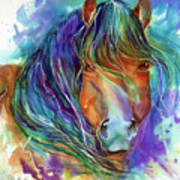 Bucky The Mustang In Watercolor Poster