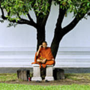 Buddhist Monk Sits Under Tree Poster by Ray Laskowitz - Printscapes