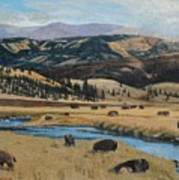 Buffalo By A Stream Poster