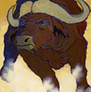Buffalo Fury Poster