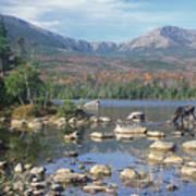 Bull Moose Feeding In Sandy Stream Pond Poster