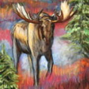 Bull Moose In Fall Poster