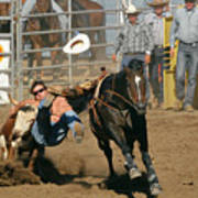 Bulldogging At The Rodeo Poster