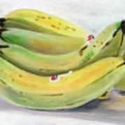 Bunch Of Bananas Poster