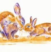 Bunnies Poster