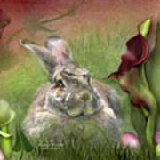 Bunny In The Lilies Poster