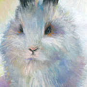 Bunny Rabbit Painting Poster