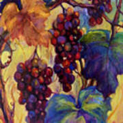 Burgundy Grapes Poster