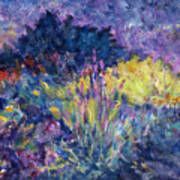 Burst Of Color-last Night In Monets Gardens Poster