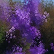 Bursting Blooms Poster