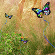 Buterflies Dream Poster