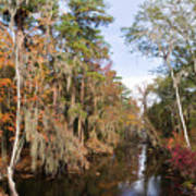 Butler Creek In Autumn Colors Poster