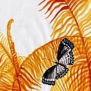 Butterfly Fern Poster