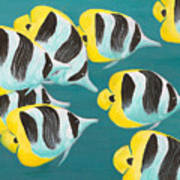 Butterfly Fish Poster
