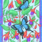 Butterfly Idyll-fuchsias Poster