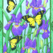 Butterfly Idyll-irises Poster