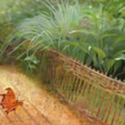 Butterfly In A Small Zen Sand Garden Poster
