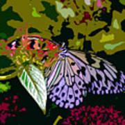 Butterfly In Garden Poster