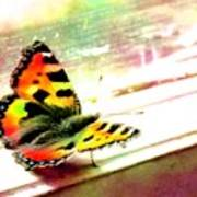 Butterfly On The Window Frame Watercolor Poster