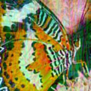Butterfly Spirit Poster