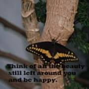 Butterfly Thing Of Beauty Poster