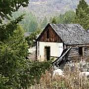 Cabin In Need Of Repair Poster