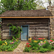 Cabin In The Tulip Patch Poster
