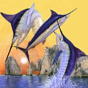 Cabo San Lucas Poster by Rick Bogert