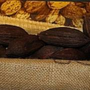Cacao Pods Poster
