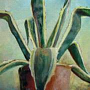 Cactus 2 Poster
