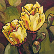 Cactus Blooms Poster