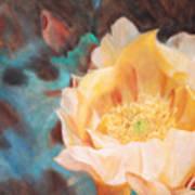 Cactus Blossom 1 Poster