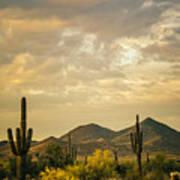 Cactus Morning Poster