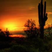 Cactus Sunrise Poster