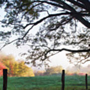 Cades Cove Autumn Morning Poster