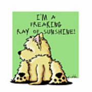Cairn Terrier Sunshine Poster
