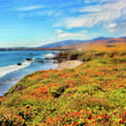 California Coast Wildflowers On Cliffs Ap Poster