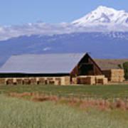 California Hay Barn Poster
