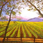 California Napa Valley Vineyard Poster by Connie Tom