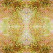 California Spring Inner Reflection Poster