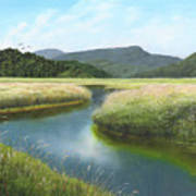 California Wetlands 2 Poster