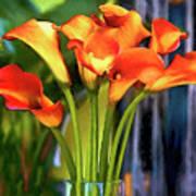 Calla Lilies Bouquet Poster