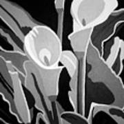Calla Lilies Bw Poster